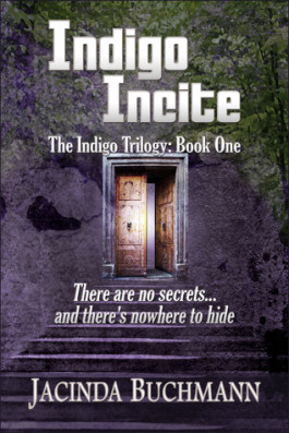 Review: Indigo Incite by Jacinda Buchmann